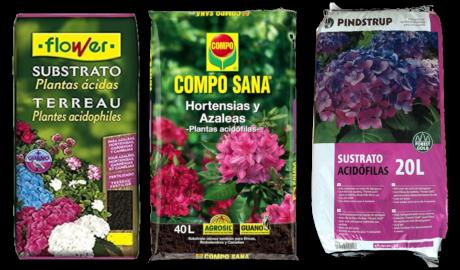 Guía de Sustratos para Plantas: Tierra Ácida