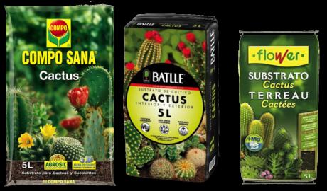 Guía de Sustratos para Plantas: Tierra Cactus y Suculentas