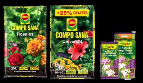 Guía de Sustratos para Plantas: Planta con Flor