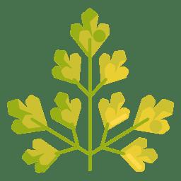 Icono de Planta Aromática