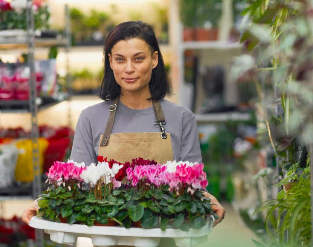 Web de Jardinería Online. Mundojardin.eu