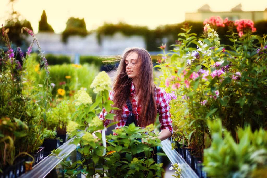 Tipos de Clientes de un Centro de Jardinería