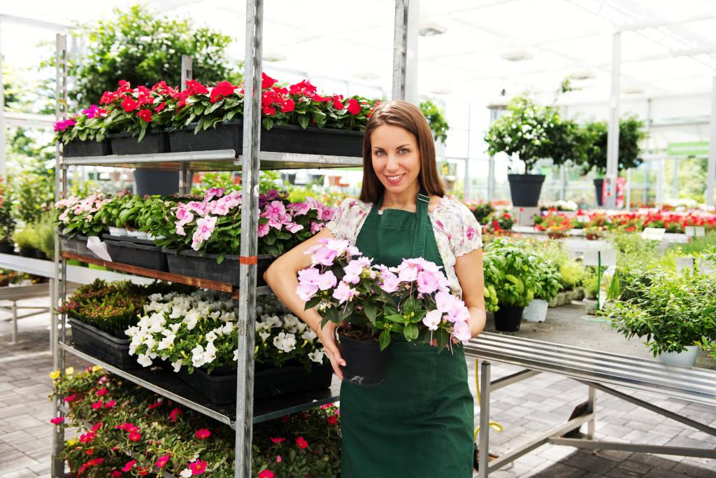 Plantas y Flores para primavera 2021