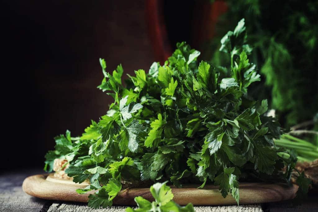 Hierbas aromáticas para cocina
